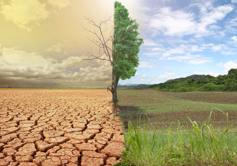 Effect of Climate change on the family Welfare