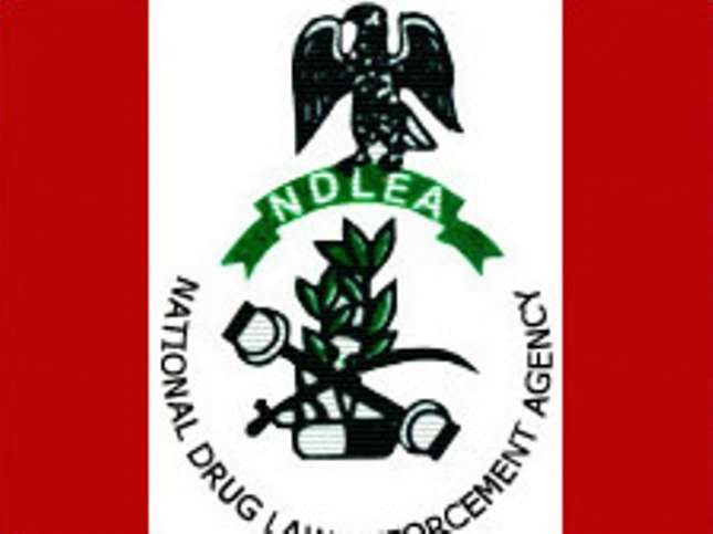 Drug dealing: NDLEA convicts 27 offenders in Rivers