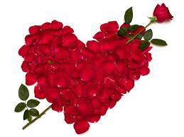 Why You Must Not Celebrate Valentine this Year.dailyfamily.ng