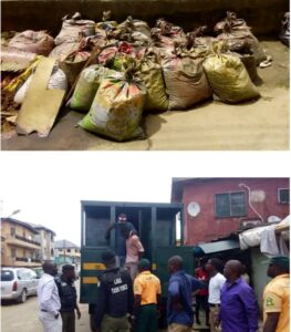 Shocking! Man with 27 Bags of Human Faeces Arrested-dailyfamily.ng