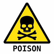 15-Year-Old Girl Drinks Poison to Avoid Her Mother's Beating.dailyfamily.ng